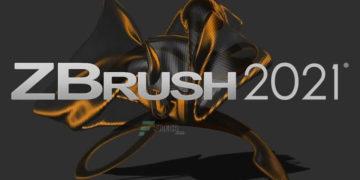 Pixologic ZBrush 2021.5.1