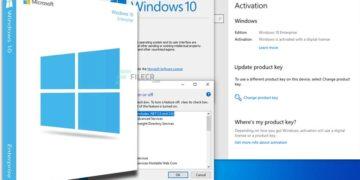 Windows 10 Enterprise 20H2 10.0.19042.746 Preactivated January 2021
